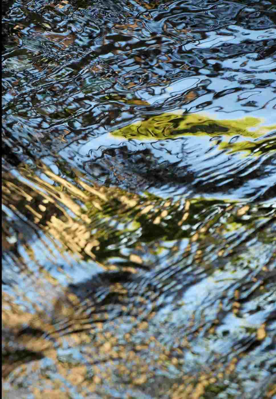 corinna-rosteck-goldwasser